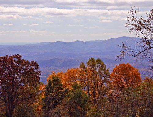 Fall Hiking in Virginia