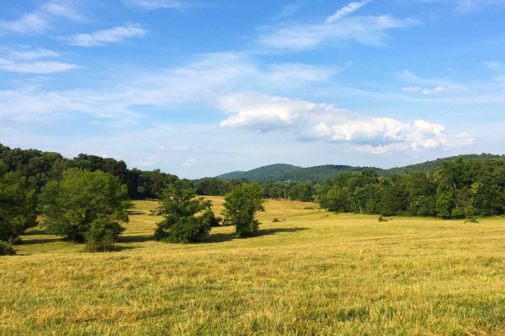 JT Samuels, Cowherd Mtn Farm, Gordonsville,Va