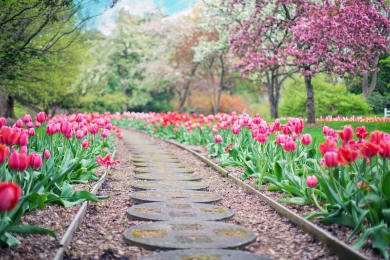 How To Experience Historic Virginia Garden Week